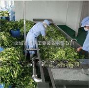全自动蔬菜清洗机 气泡式蔬菜清洗机 油菜清洗机 果蔬加工设备