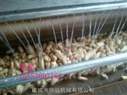 广州番薯毛辊清洗机