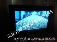 立威供应化工原料微波干燥设备