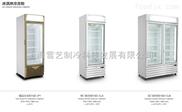 冰淇淋冷冻柜单门和双门