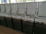 BR-8000型定时定量采样器 水质自动采样器