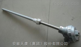 WRNN-230耐磨热电偶
