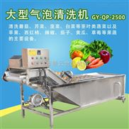 洗茶叶的机器,自动蔬菜清洗机全自动洗菜机