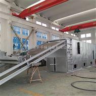 DWT合成氨催化剂干燥机