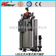 環保節能燃氣蒸汽鍋爐
