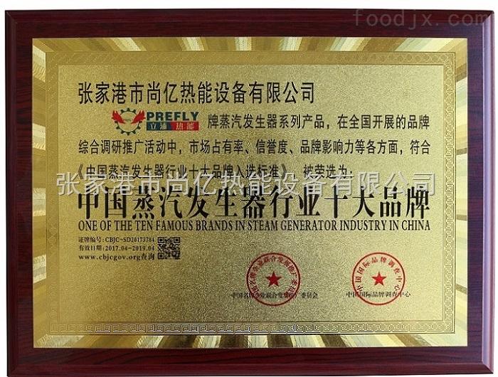 中国蒸汽发生器十大品牌