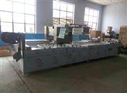 DZL-420-内蒙古牛肉粒拉伸膜真空包装机价格