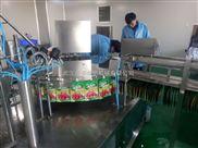 武漢市伊佳諾全自動自立袋灌裝旋蓋機