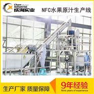 全自动NFC橙汁生产线