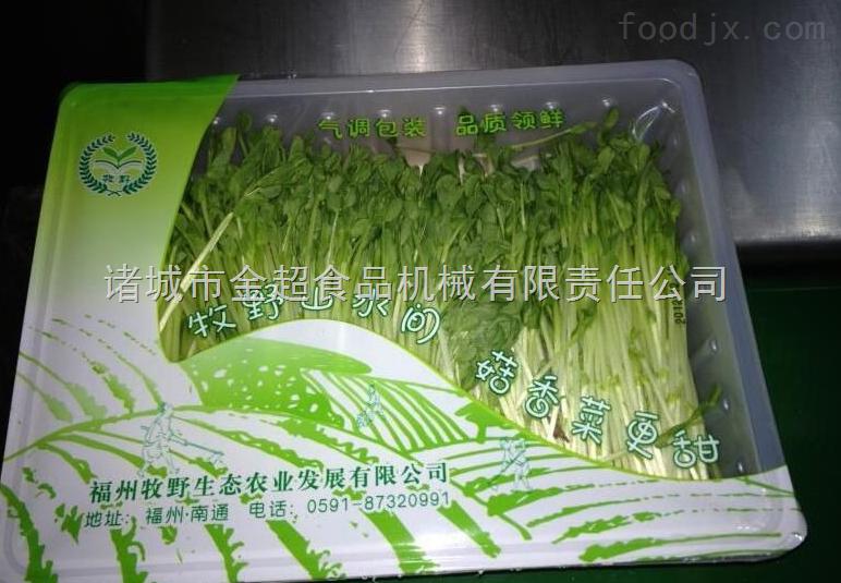连续式封盒蔬菜包装机