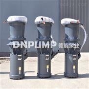 简易型潜水轴流泵型号_价格_图片
