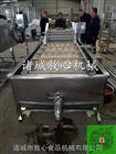FX-800蔬菜加工设备价格 净菜设备价格