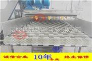 MSQXJ-20-毛刷水果清洗机