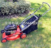 草坡绿化修剪机 景区植被四轮草坪机