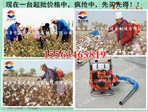 小型棉花采摘机 电动采棉机价格