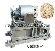XLR-QP50A--专供长沙大型气流膨化机(粮食气流膨化机)