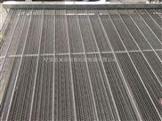 豆腐皮面片烘干用链条式不锈钢网带