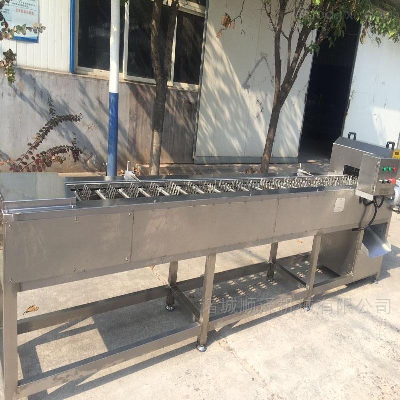 专业供应可调式速冻玉米切段机 切割设备