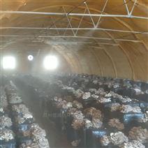 菌菇种植喷雾加湿设备