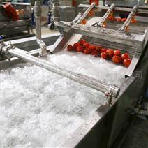 西红柿芹菜大葱果蔬清洗机