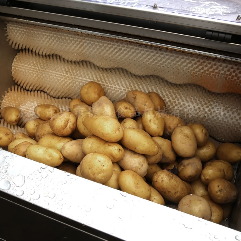 DYTP-1500-毛刷清洗脱皮机 土豆去皮机