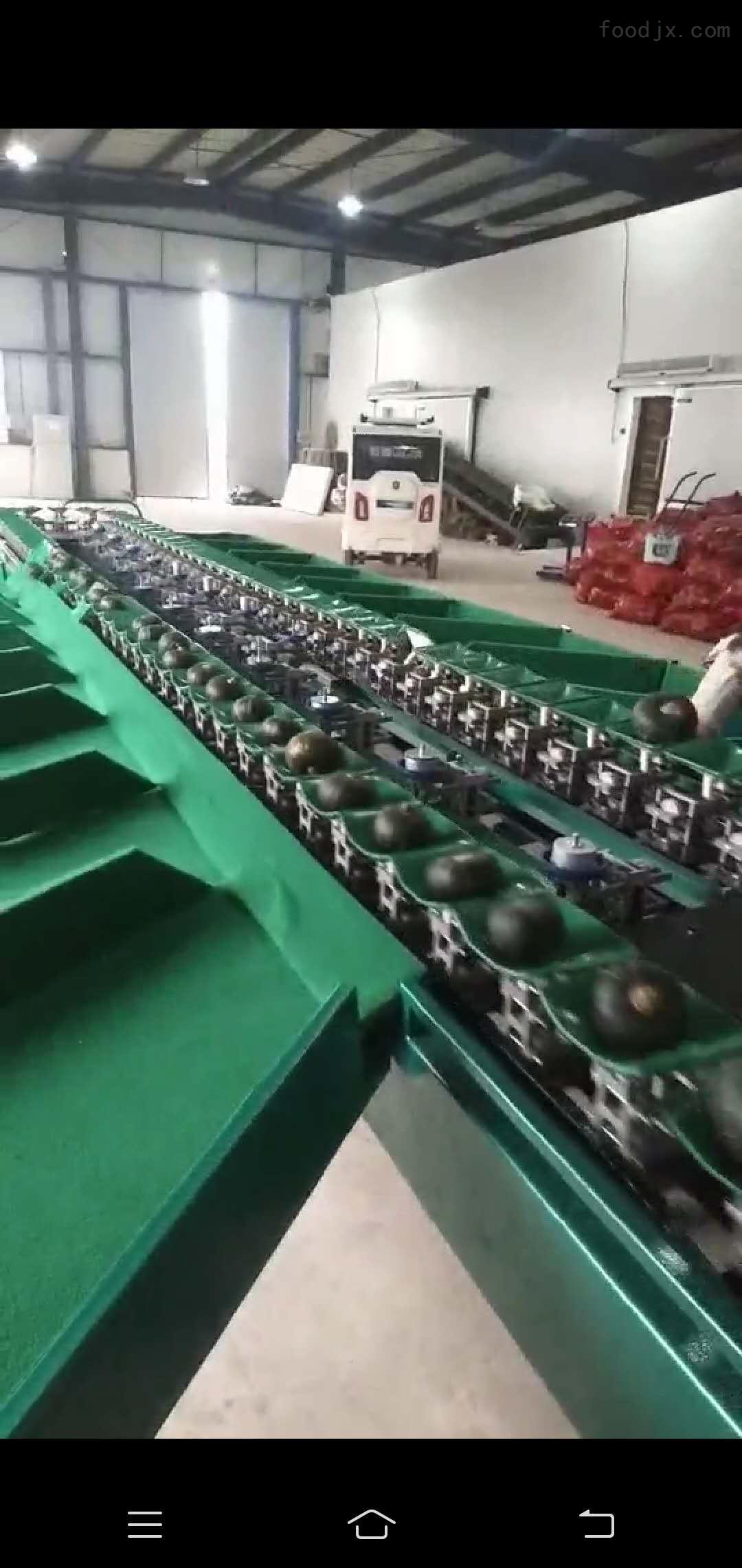 贝贝南瓜分大小的机器 可分选3公斤以下南瓜