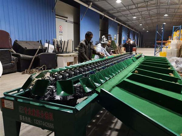 猕猴桃分级设备挑选水果大小的机器分果机