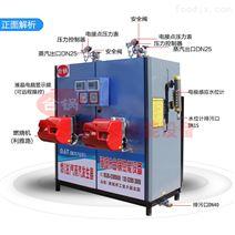 0.6T燃油(氣)蒸汽發生器廠家直銷
