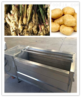不锈钢胡萝卜清洗设备厂家毛辊清洗机