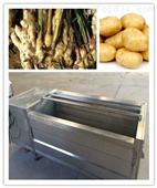 土豆清洗設備~全自動不銹鋼蘿卜去皮機