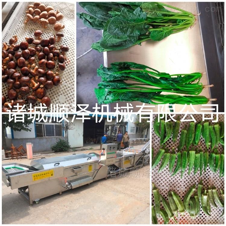 热销环保型多功能高效土豆条专用漂烫预煮机