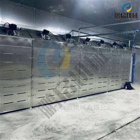 澳洲进口牛肉解冻机 低温高湿解冻设备