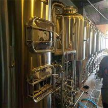新疆300升自酿啤酒设备 酿酒机器