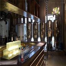 湖南1000升精釀啤酒設備