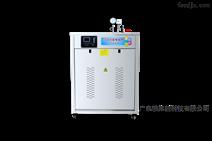 帕莱顿超长耐用电加热蒸汽源机