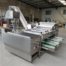 舜康生产直销蒜米自动分选级大小分级机