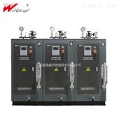 WFD小型免报检蒸汽发生器