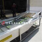 不锈钢连续式小型净菜加工生产线
