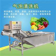 多功能蔬菜气泡清洗机