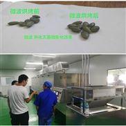 南瓜子熟化设备坚果烘烤炉