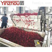 蓝莓草莓树莓加工生产线