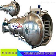 JRW-10平方真空冻干机 圣女果低温脱水设备