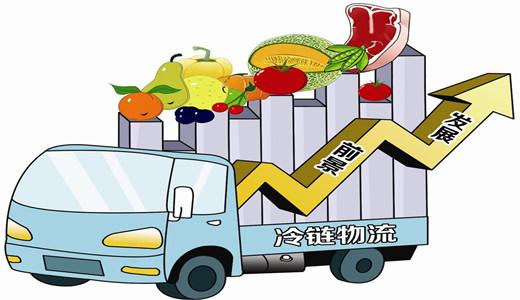 山东加快构筑农产品冷链物流体系