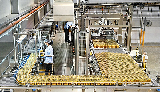 自动化生产线推动淅川食品工业发展