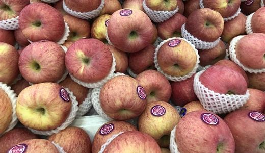 水果出口市場擴大 清洗、分選設備提升果品競爭力