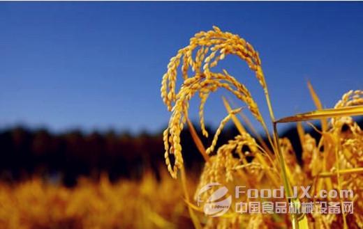 我国农业发展急需注入新动力