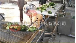 根茎类蔬菜清洗机