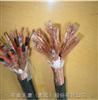 DJVPV-300/500V-4*2*1.0计算机电缆