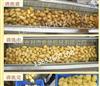 LJQX-1800商用大中小型咸菜疙瘩毛辊清洗机 辣根毛辊请洗去杂机 价格低经久耐用 清洗力度大