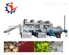 LJHJ-10000厂家低价供应猕猴桃干燥机 香蕉片烘干设备哪家专业 连续芒果烘干机多少钱一台
